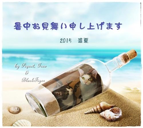 2015summer3.jpg
