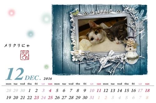 Dec.jpg