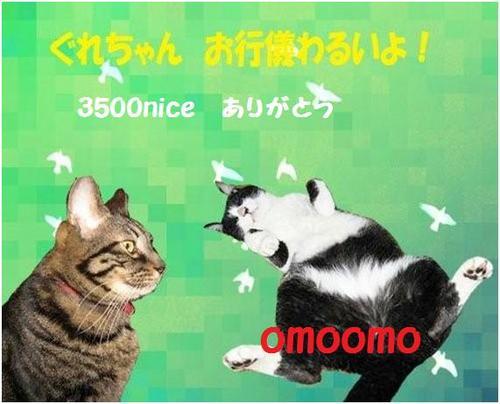 3500nice-omoomosan.jpg