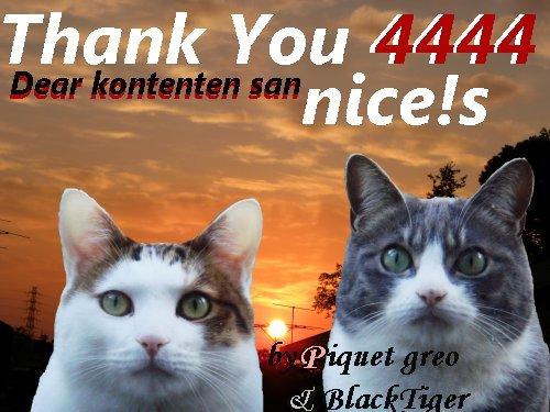 4444-kontenten-san.jpg