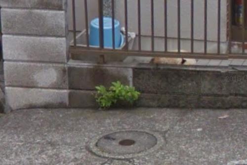 Google_Map_シャム丸2.png