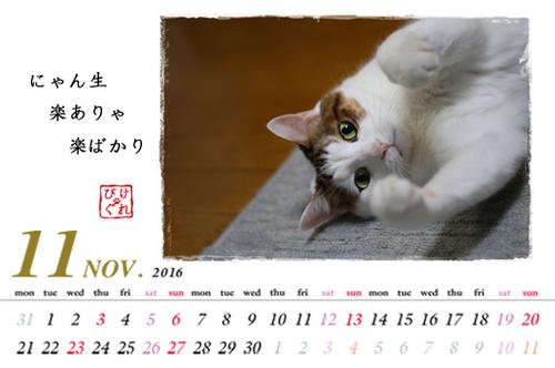 Nov.jpg