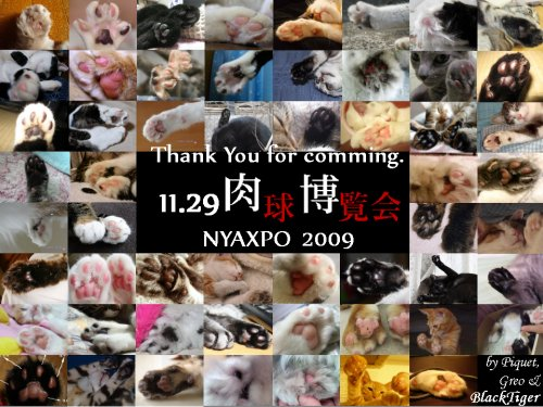 nyaxpo2009card2.jpg